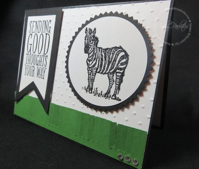Zoo Review Card